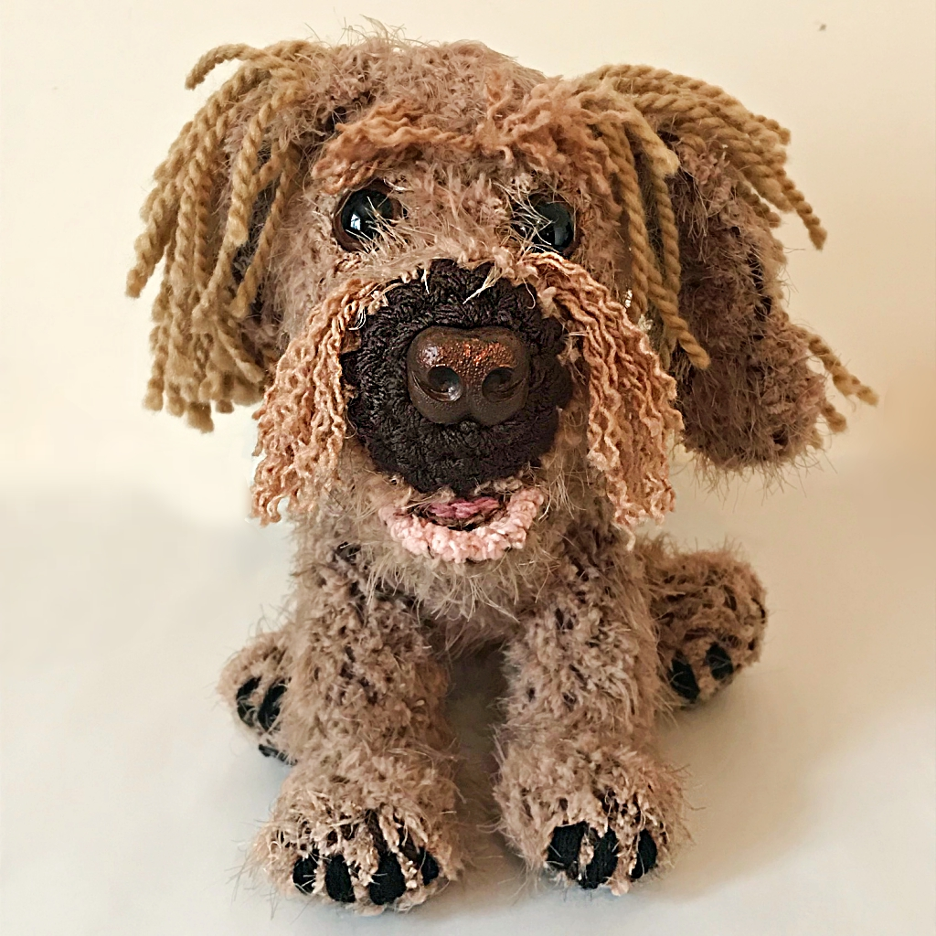 Australian min Labradoodle - Three Beauties