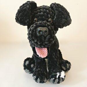 Black Labrador - Three Beauties