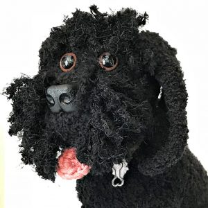 Four Fluffy Beauties - Maggie the Black Cockapoo