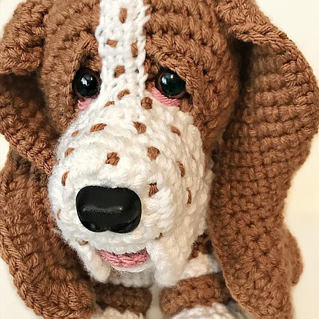 Baxter the Bassetthound
