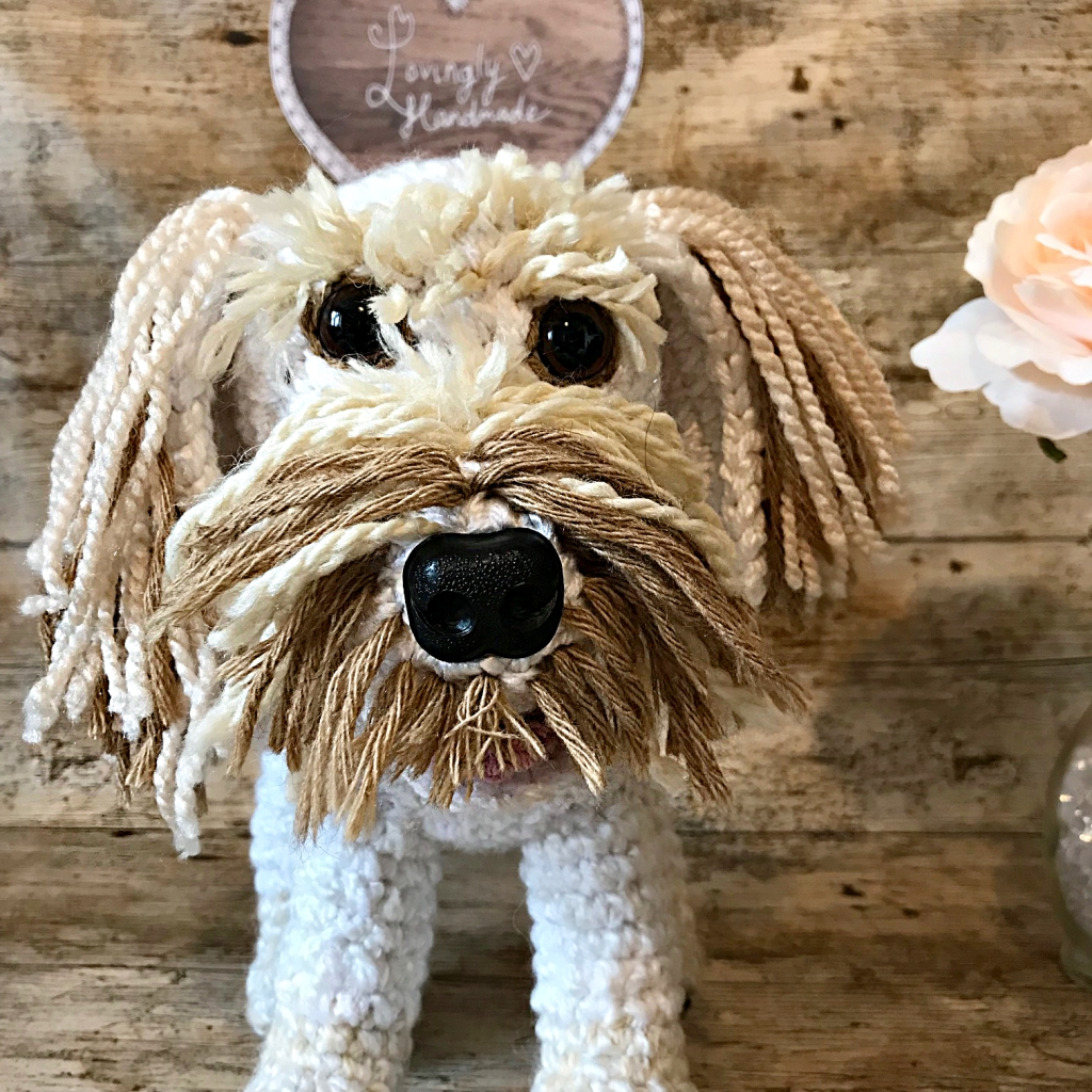 Beau the Cockapoo