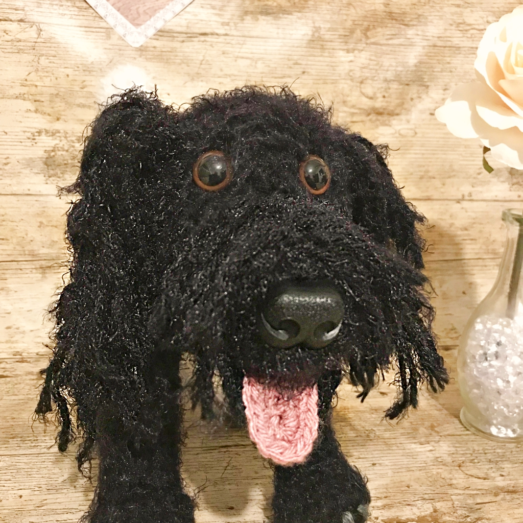 Jet the Cockapoo