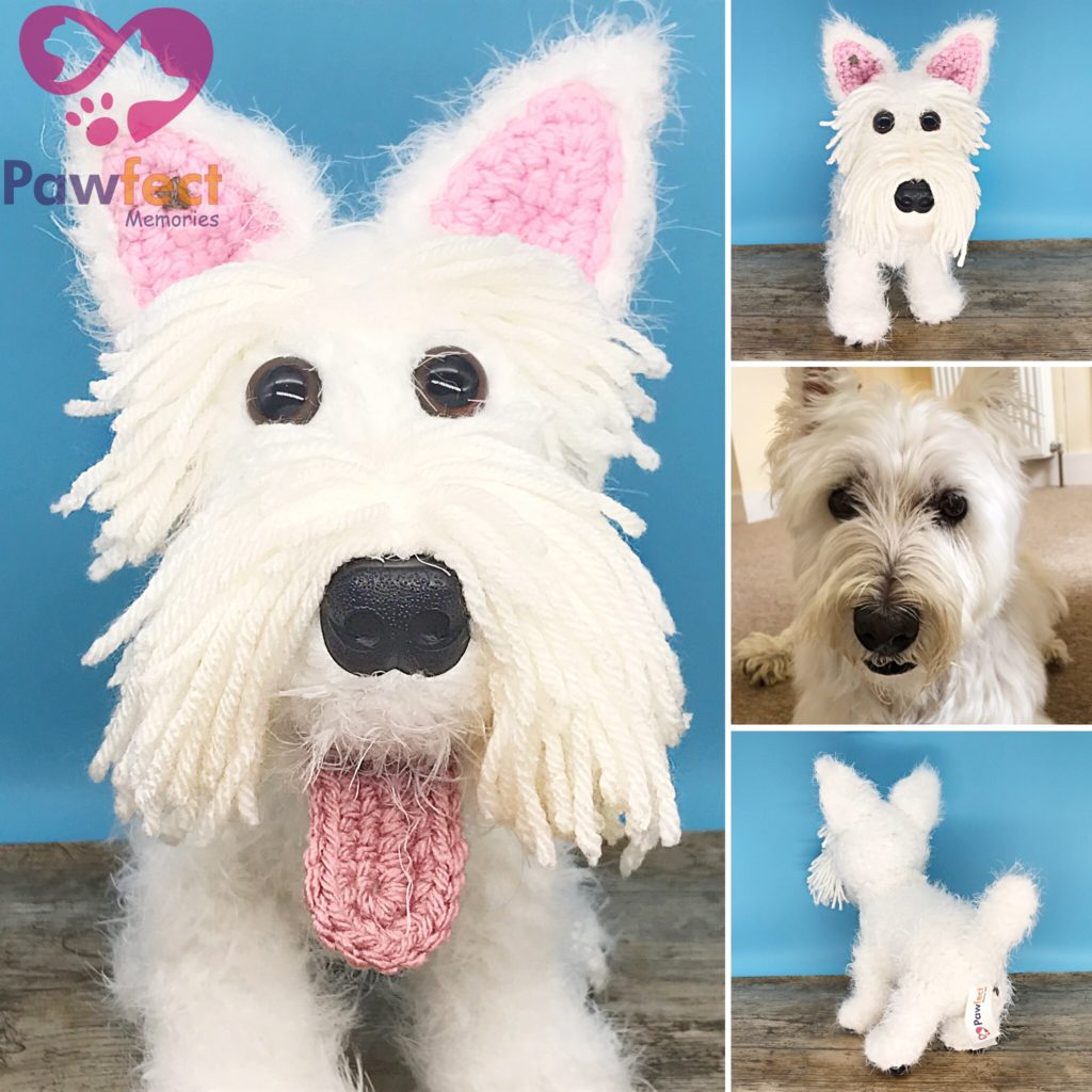 Connor the West Highland Terrier