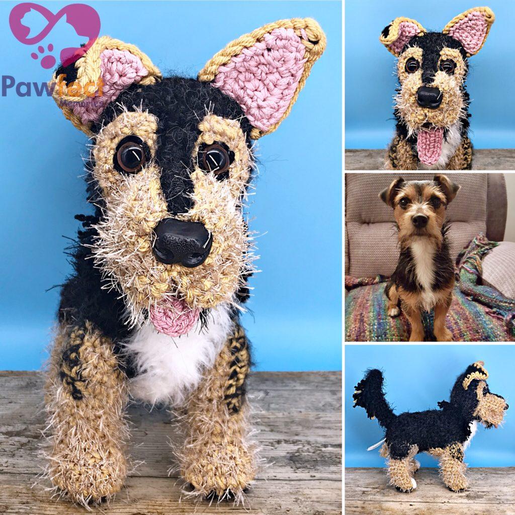 Reggie the Jack Russell Terrier