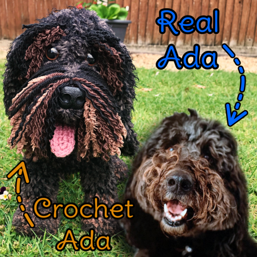 Ada the Newfoundland Cockapoo Cross - Standard Pet Cuddly Toy