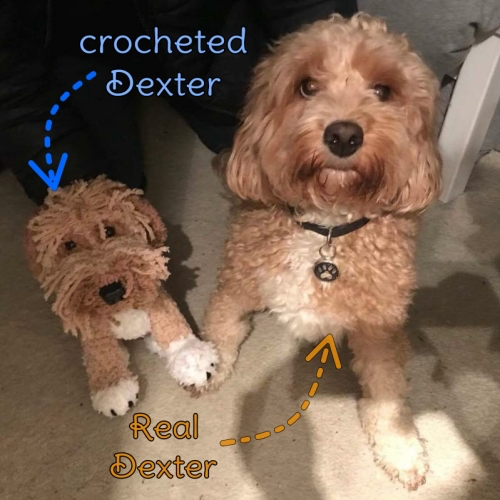 Dexter the Cockapoo - Standard Pet Cuddly Toy