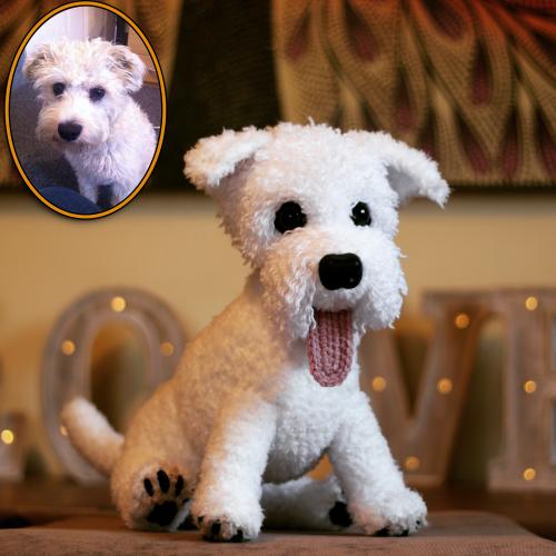 Dougie the Bichon Frise Schnauzer Cross - Standard Pet Cuddly Toy