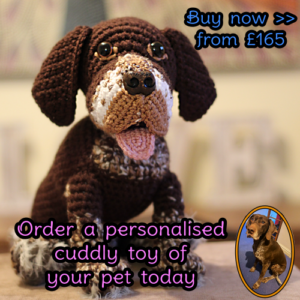 Personalised Pet Cuddly Toy